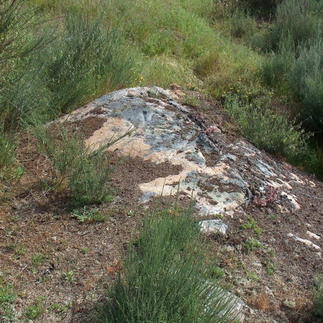 Petroglyphs of Insuiña